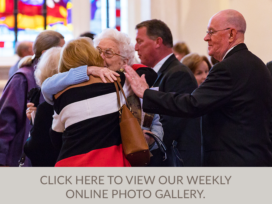 View our weekly online photo gallery here.